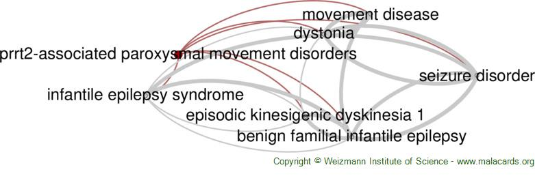 Diseases related to Prrt2-Associated Paroxysmal Movement Disorders