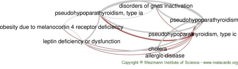 Diseases related to Pseudohypoparathyroidism, Type Ic