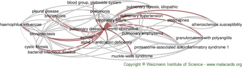 Diseases related to Pulmonary Disease, Chronic Obstructive