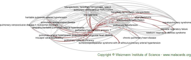 Diseases related to Pulmonary Hypertension, Primary, 1