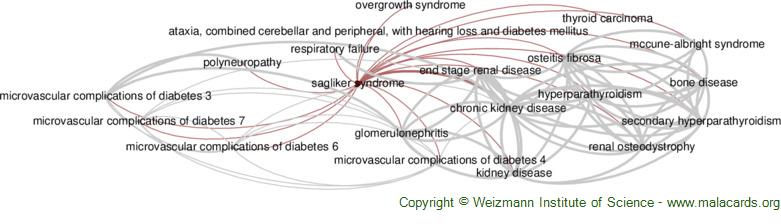 Diseases related to Sagliker Syndrome