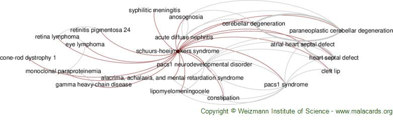 Diseases related to Schuurs-Hoeijmakers Syndrome