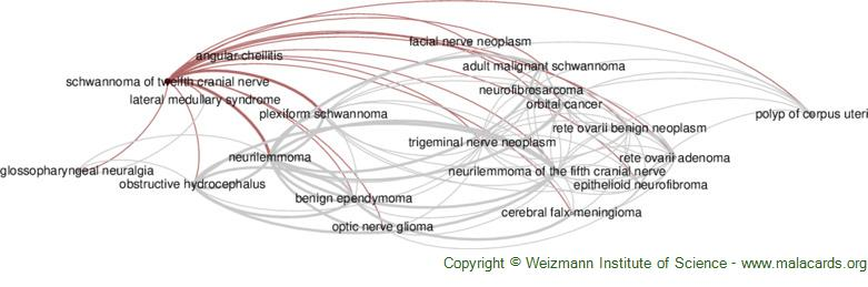 Diseases related to Schwannoma of Twelfth Cranial Nerve