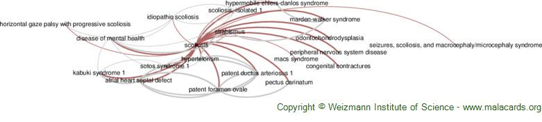 Diseases related to Scoliosis