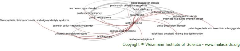 Diseases related to Scott Syndrome