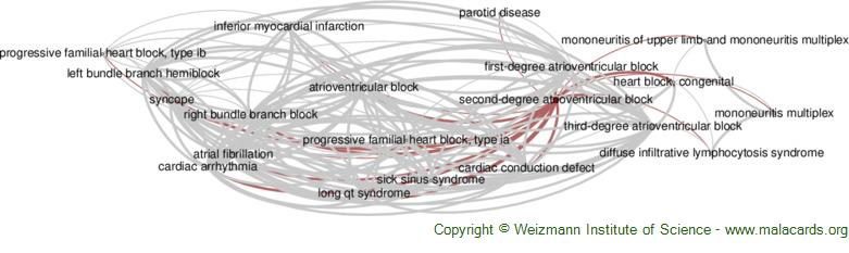 Diseases related to Second-Degree Atrioventricular Block