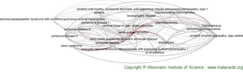 Diseases related to Senile Plaque Formation