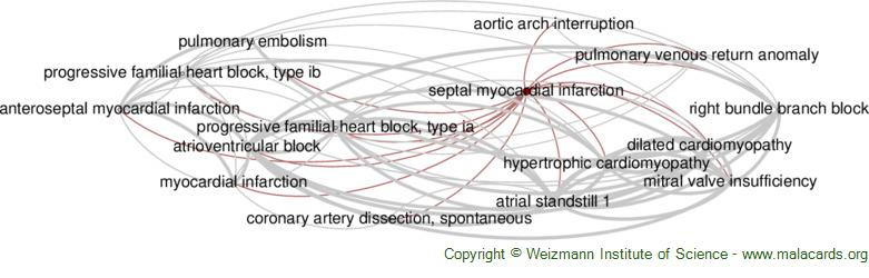 Diseases related to Septal Myocardial Infarction