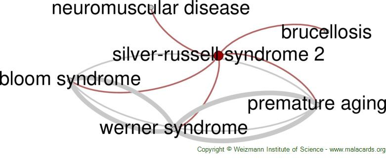 Diseases related to Silver-Russell Syndrome 2