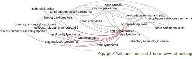 Diseases related to Soft Palate Cancer