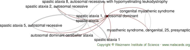 Diseases related to Spastic Ataxia 1, Autosomal Dominant
