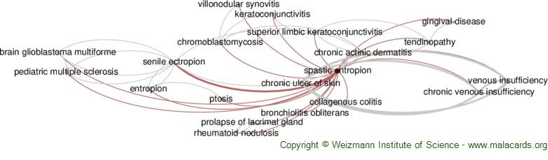 Diseases related to Spastic Entropion