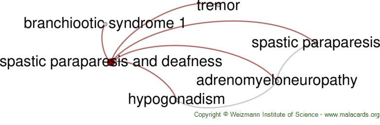 Diseases related to Spastic Paraparesis and Deafness