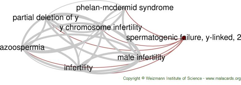 Diseases related to Spermatogenic Failure, Y-Linked, 2