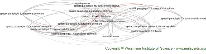 Diseases related to Spinal Cord Neuroblastoma