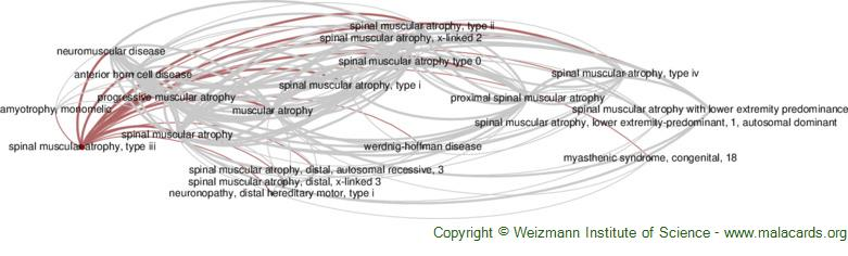 Diseases related to Spinal Muscular Atrophy, Type Iii