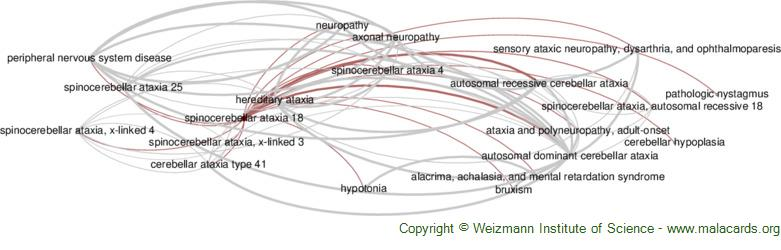 Diseases related to Spinocerebellar Ataxia 18