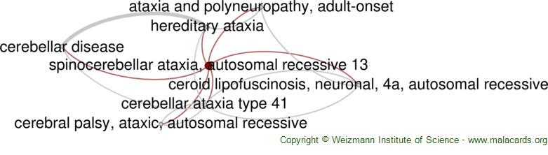 Diseases related to Spinocerebellar Ataxia, Autosomal Recessive 13