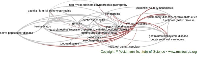 Diseases related to Stomach Disease