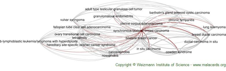 Diseases related to Synchronous Bilateral Breast Carcinoma