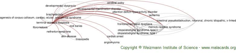 Diseases related to Terminal Osseous Dysplasia