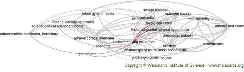 Diseases related to Testicular Leydig Cell Tumor