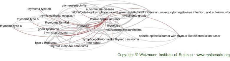 Diseases related to Thymic Epithelial Tumor