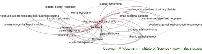 Diseases related to Thymus Clear Cell Carcinoma