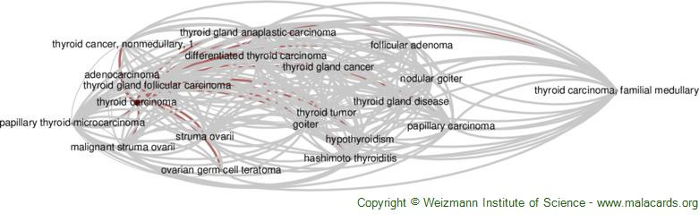 Diseases related to Thyroid Carcinoma