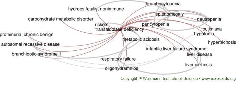 Diseases related to Transaldolase Deficiency
