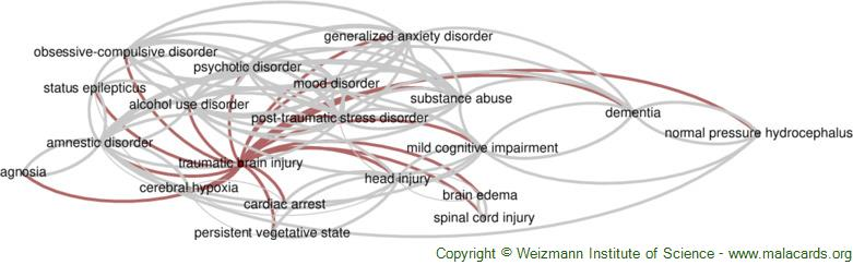 Diseases related to Traumatic Brain Injury