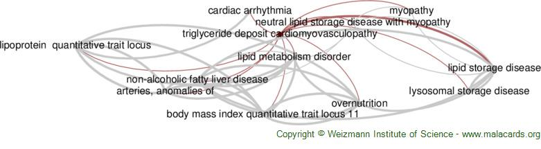 Diseases related to Triglyceride Deposit Cardiomyovasculopathy