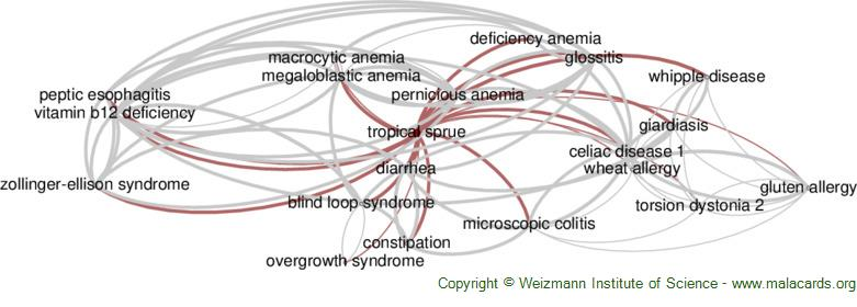 Diseases related to Tropical Sprue