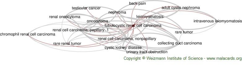 Diseases related to Tubulocystic Renal Cell Carcinoma