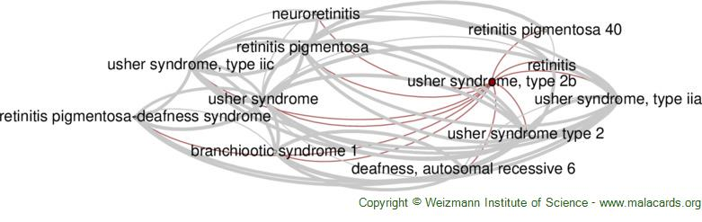 Diseases related to Usher Syndrome, Type 2b