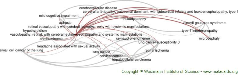 Diseases related to Vasculopathy, Retinal, with Cerebral Leukoencephalopathy and Systemic Manifestations