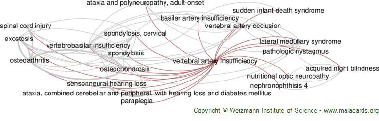 Diseases related to Vertebral Artery Insufficiency