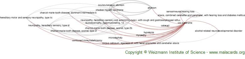 Diseases related to Vici Syndrome