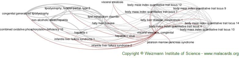 Diseases related to Visceral Steatosis, Congenital