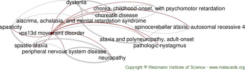 Diseases related to Vps13d Movement Disorder
