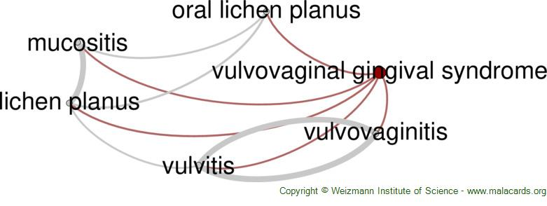 Diseases related to Vulvovaginal Gingival Syndrome