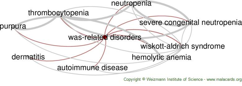 Diseases related to Was-Related Disorders