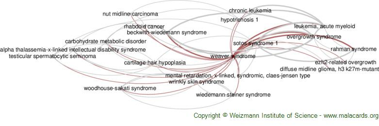 Diseases related to Weaver Syndrome