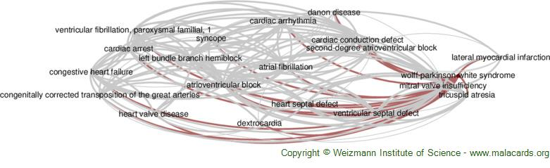 Diseases related to Wolff-Parkinson-White Syndrome