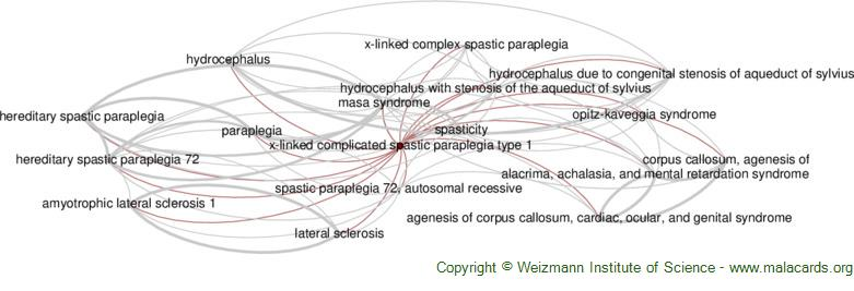 Diseases related to X-Linked Complicated Spastic Paraplegia Type 1
