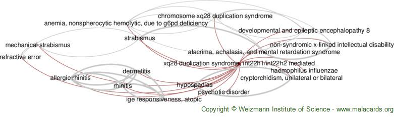 Diseases related to Xq28 Duplication Syndrome, Int22h1/int22h2 Mediated