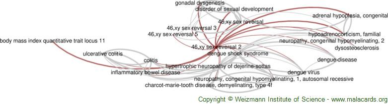 Diseases related to 46,xy Sex Reversal 2