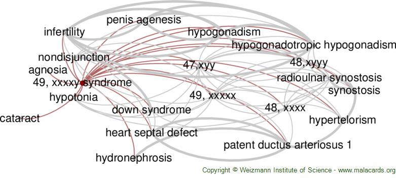 Diseases related to 49, Xxxxy Syndrome