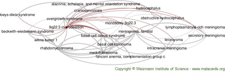 Diseases related to 9q22.3 Microdeletion