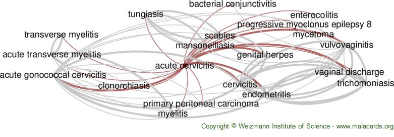 Diseases related to Acute Cervicitis